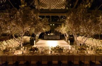 Η φάρμα Margi σας υποδέχεται σ' ένα μοναδικό σκηνικό 25 μόλις λεπτά από το κέντρο της Αθήνας