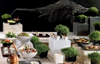 Παρουσίαση που θυµίζει installation art από το Δειπνοσοφιστήριον Catering στην Αίθουσα των Πετρωµάτων