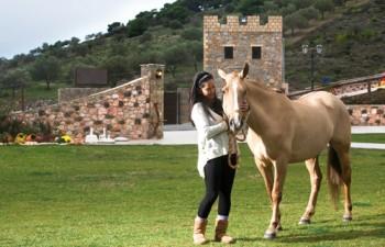 Περιηγηθείτε στις εγκαταστάσεις του ιπποστασίου και θαυμάστε τα υπέροχα άλογα